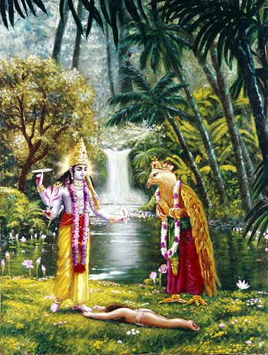 Garuḍa was asked by the Lord to leave that place because the snake Vāsuki, who was to be used as the rope for churning, could not go there in the presence of Garuḍa. Garuḍa, the carrier of Lord Viṣṇu, is not a vegetarian. He eats big snakes.