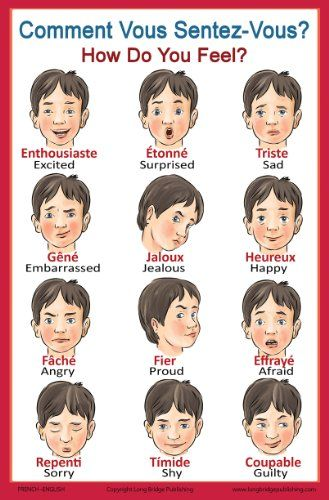 French Language School Poster: French Words About Feelings with English Translation - Classroom Chart http://www.amazon.com/dp/B00K6YTXFI/ref=cm_sw_r_pi_dp_jW5Qtb1NAFFWE8BW