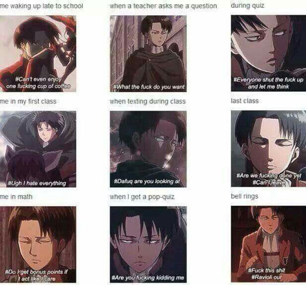 I am Levi. A less badass but taller Levi (and female)<<< Same. But I have short hair and dark circles so I look a bit like him when I'm mad.