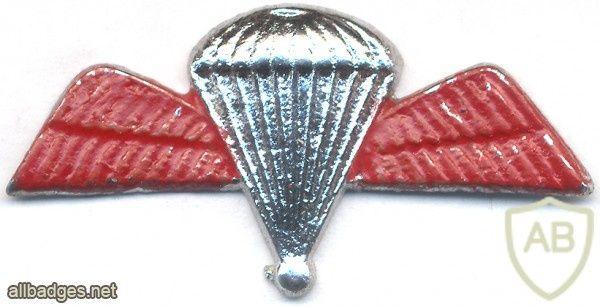 INDIA Army 100 Para Jumps Indicator Badge, obsolete