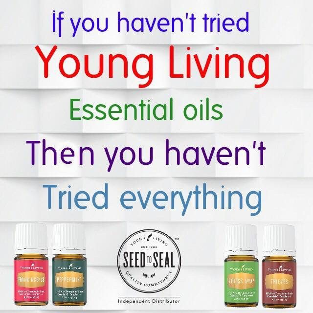 Young Living Essential Oils has become an important asset to my family. Our oil diffuser is misting the kitchen and bedrooms daily. My go to oil […]