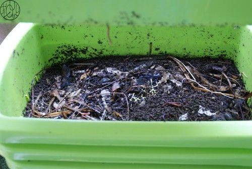 Les écolotrucs - N°2 - Composter ses déchets organiques