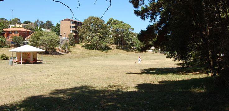 varna park - Varna Street Waverley 2024 NSW
