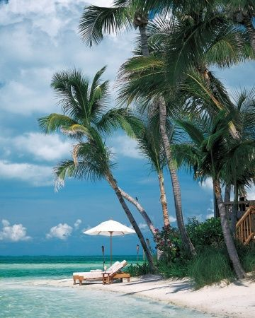 Key West, Florida  @Sarah Elizabeth let's plan a best freind vacation for sometime next year somewhere warm and fun like this <3