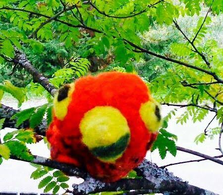 luonto taito työ: Puna ara lintujen etelä Amerikka luonto linntu