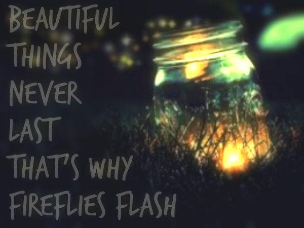 Ron Pope- Fireflies
