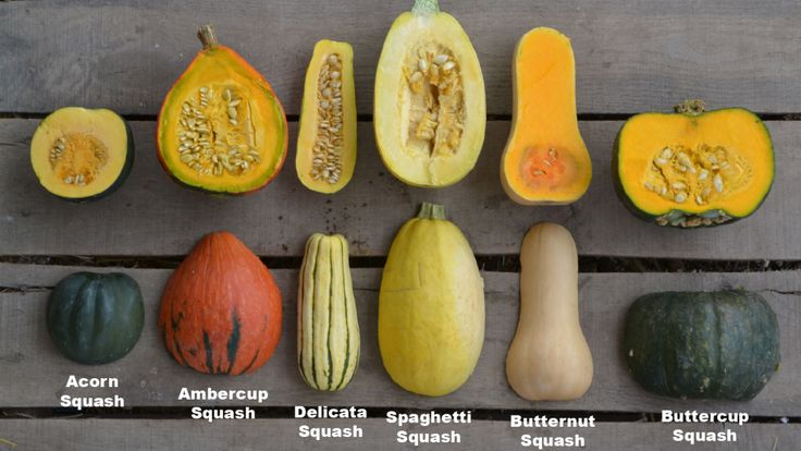 Here are a few easy squash recipes to help you incorporate this nutritious veggie into your diet.