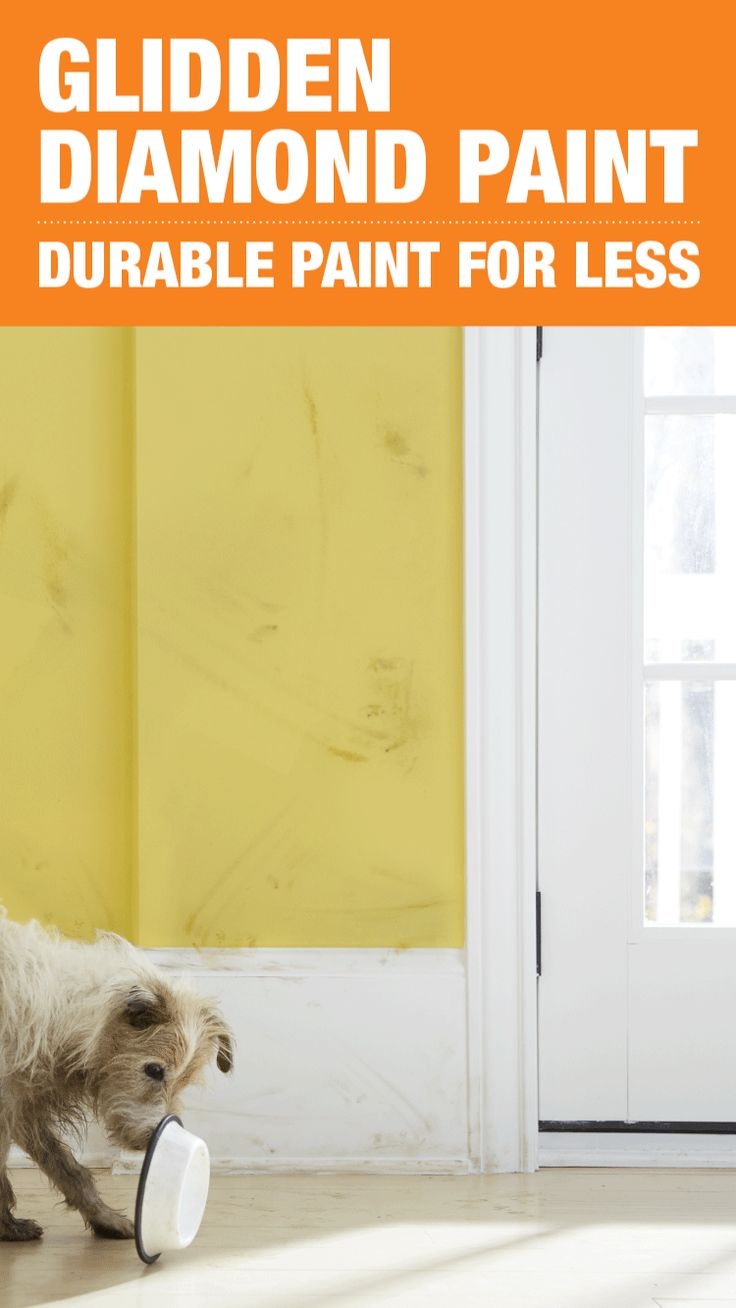 Choose a paint that not only beautifies your home but keeps its walls stain-free. Glidden Diamond paint is tough enough to stand up to kids, pets and everyday messes. With outstanding scrubbability and washability, clean walls are just a swipe away. Click to learn more about this durable paint and explore color options.