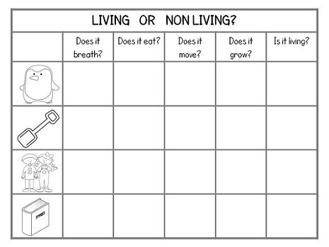 Worksheets Living Vs Nonliving Worksheet 104 best images about science living vs non basic and things fold learn