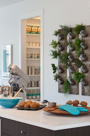 Cocina contemporánea con el diseñador blanca encimera de superficie sólida, Corian, contadores de Corian, Isla de cocina, gabinetes europeos
