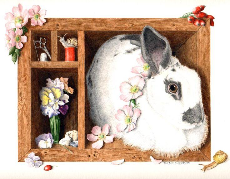 Portfolio - Kelly Archer Wildlife & Pet Portraits  #rabbit #painting #watercolor #watercolour #stilllife #portraits #petportraits