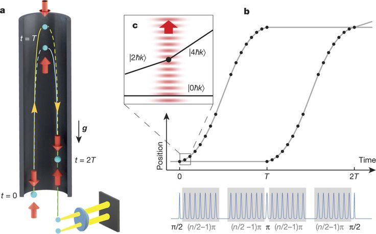 (Phys.org)—A team of researchers working at Stanford University has extended the record for quantum superposition at the macroscopic level, from 1 to 54 centimeters. In their paper published in the journal Nature, the team describes the experiment they conducted, their results and also discuss what their findings might mean for researchers looking to find the cutoff point between superposition as it applies to macroscopic objects versus those that only exist at the quantum level. Nature has…