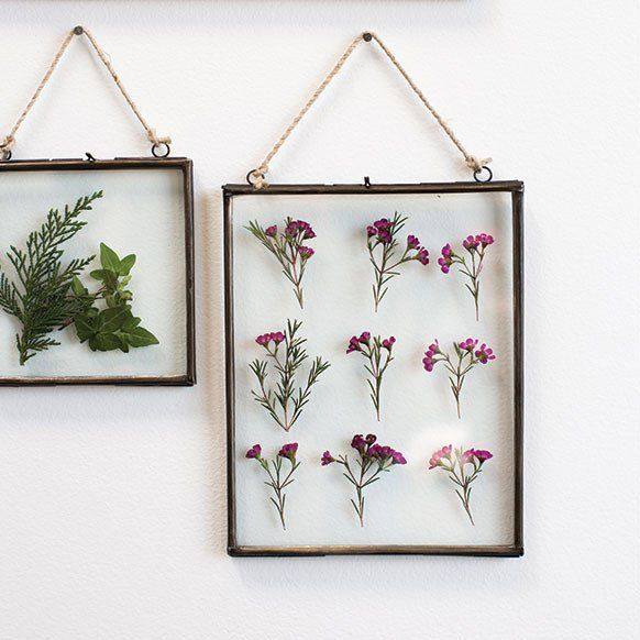 "Decorative Hanging Metal Frame with Glass Insert<br>8"" x 10.5"""