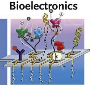 #Biosensors & #Bioelectronics : Biosensor is an analytical apparatus that makes use of biological molecules or living organism, in particular antibodies or enzymes to identify the existence of chemicals.