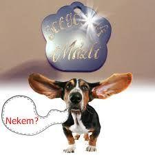 Kutya, cica biléták gravírozása. http://www.xfer.hu/kutya_cica_biletak
