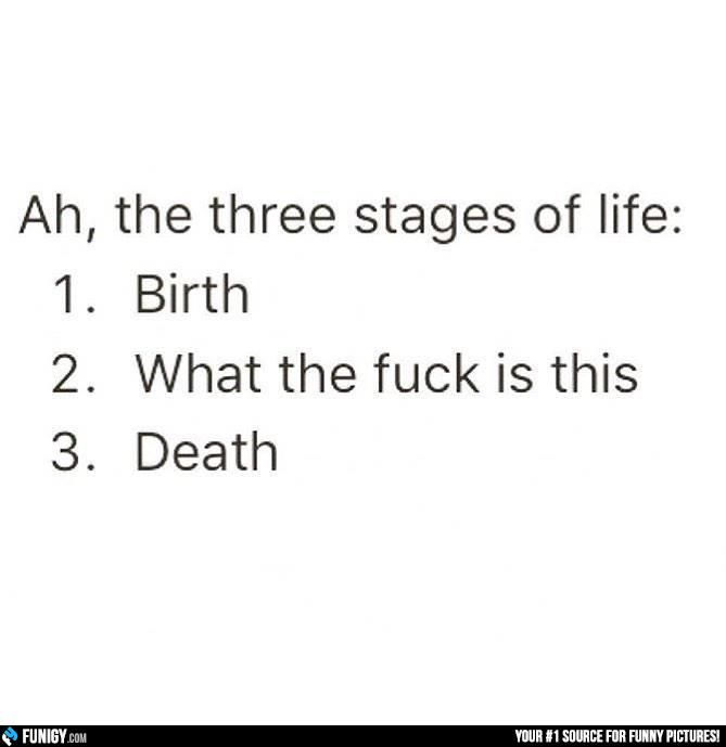 The three stages of life (Funny Misc Pictures) - #birth #death #life #stages