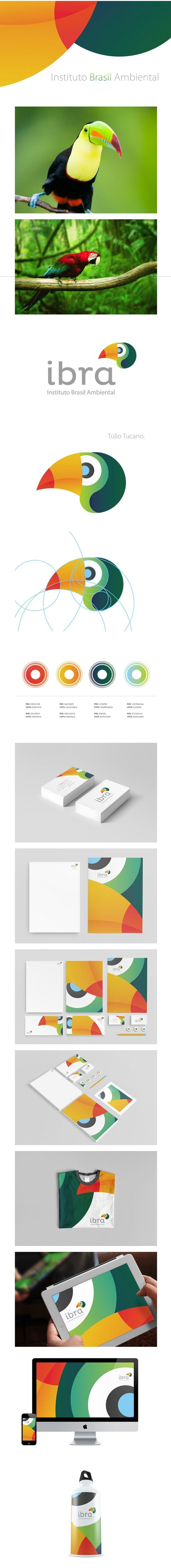 IBRA brand and identity elements