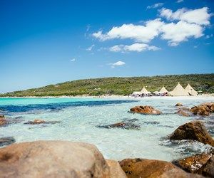 TAMARA BADENOCH Collection | Qantas Travel Insider