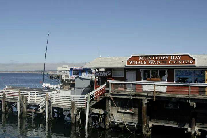 USA, Monterey Bay California