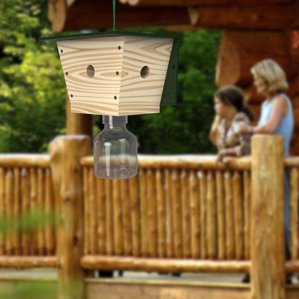 Carpenter Bee Trap Its That Time Of Year Need To Protect The House From Destruction