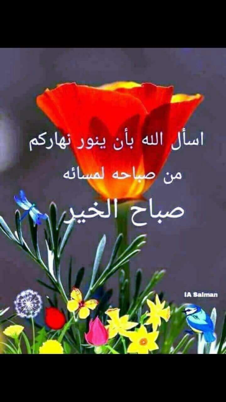 دعاء يجعل وجهك يشع نورا كالبدر Youtube Islamic Quotes Quran Islam Facts Islamic Quotes