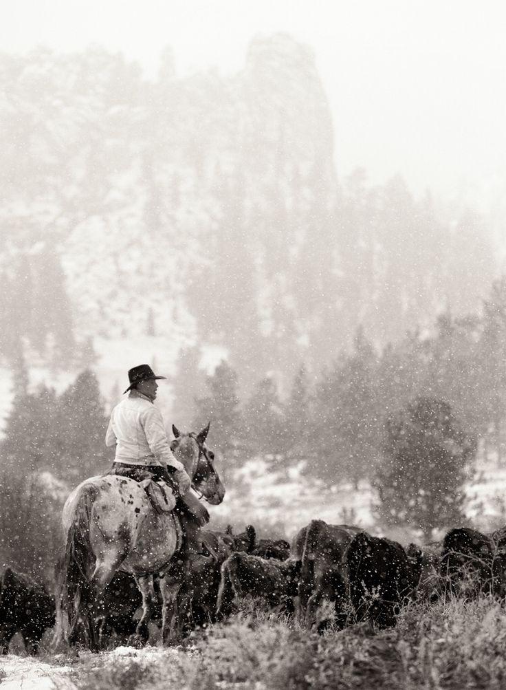 Cowboy and his appaloosa...great ranch horses.                                                                                                                                                                                 More