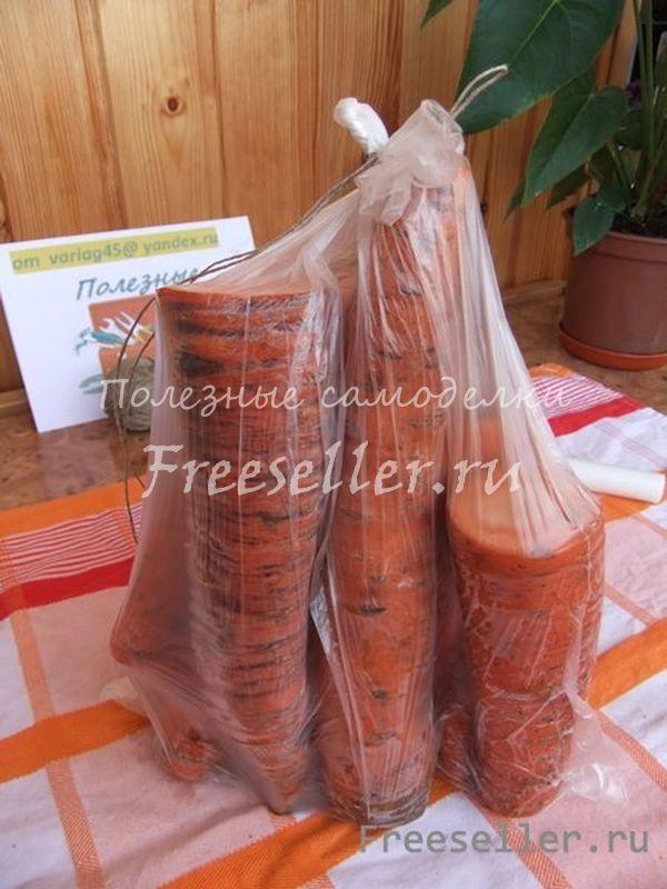 Как сохранить морковь до следующего лета