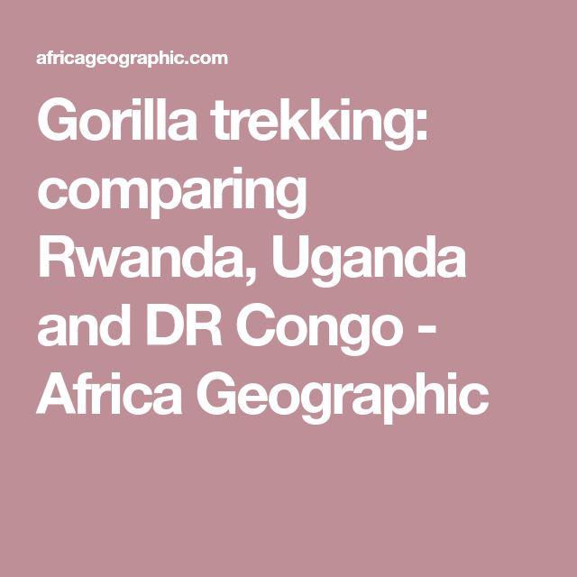 Gorilla trekking: comparing Rwanda, Uganda and DR Congo - Africa Geographic