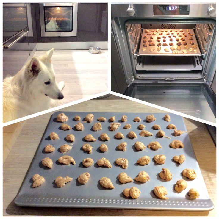Célèbre Les 25 meilleures idées de la catégorie Biscuits pour chiens faits  FA84