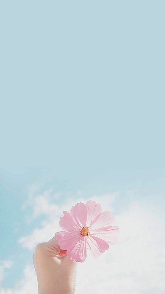 55 Elegant Phone Wallpapers You Will Like Page 4 Of 200 In 2020 Phone Wallpaper Pastel Beautiful Wallpapers Flower Wallpaper