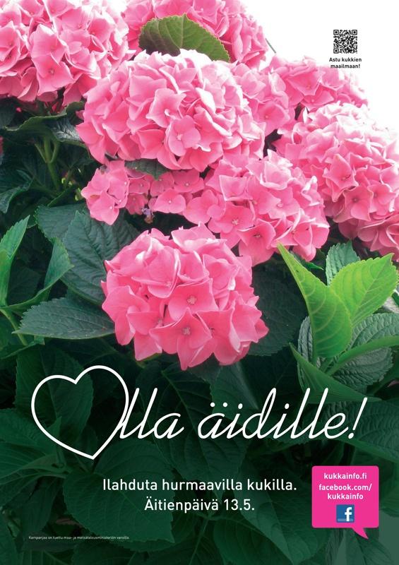 kukkainfo.fi -> Rakkaudella äidille! 2012