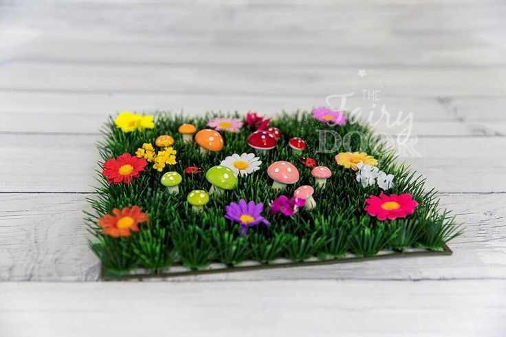 Fairy Grass with Flowers