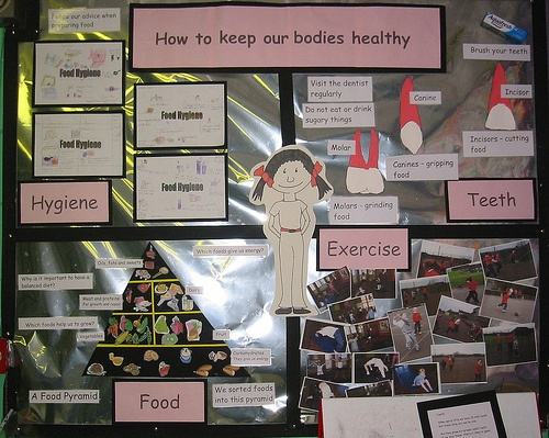 """""""How to keep our bodies healthy"""""""