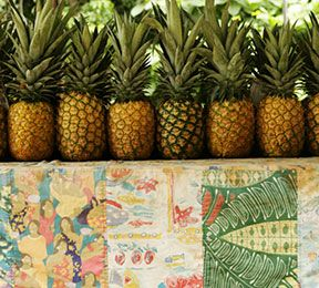 All About YOU: Support Hawaii's Economy - Health Tip - Musculoskeletal Health