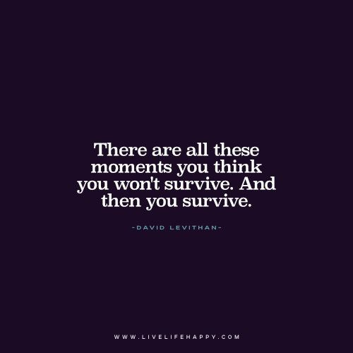 Life Quote: There are all these moments you think you won't survive. And then you survive. - David Levithan