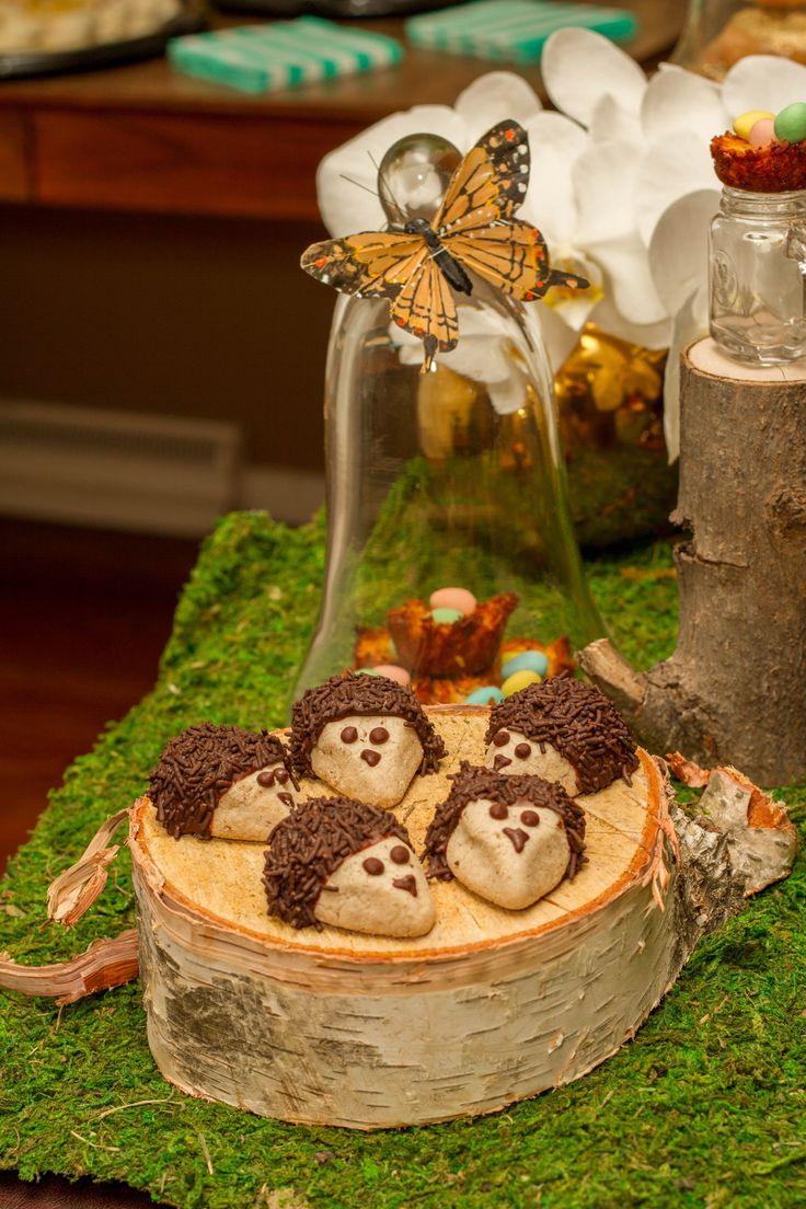 Hedgehog Cookies for Woodland Baby Shower. Recipe: http://www.tasteofhome.com/recipes/chocolate-pecan-hedgehog-cookies