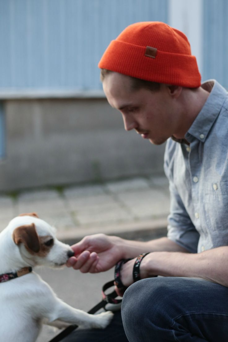 Cute Jack russel terrier and dog daddy. Summer Outfit for Men. Wool beanies for Men by VAI-KØ.