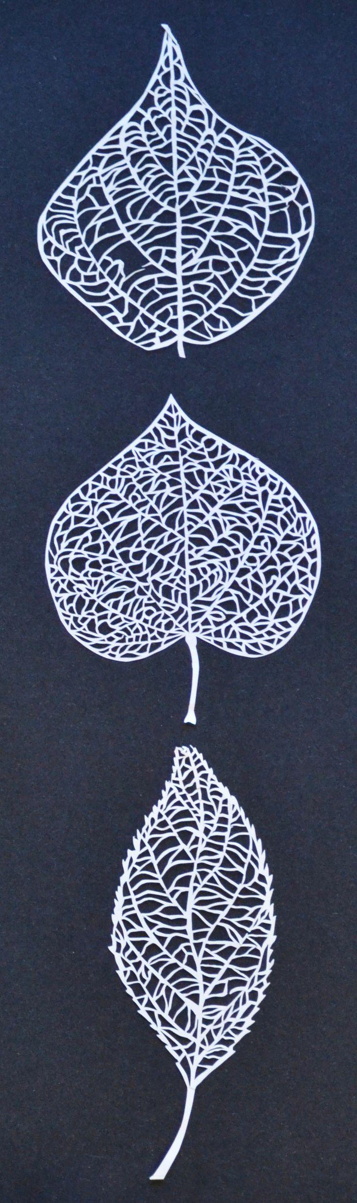 Three Leaves, paper cutouts. Maria Palkon.