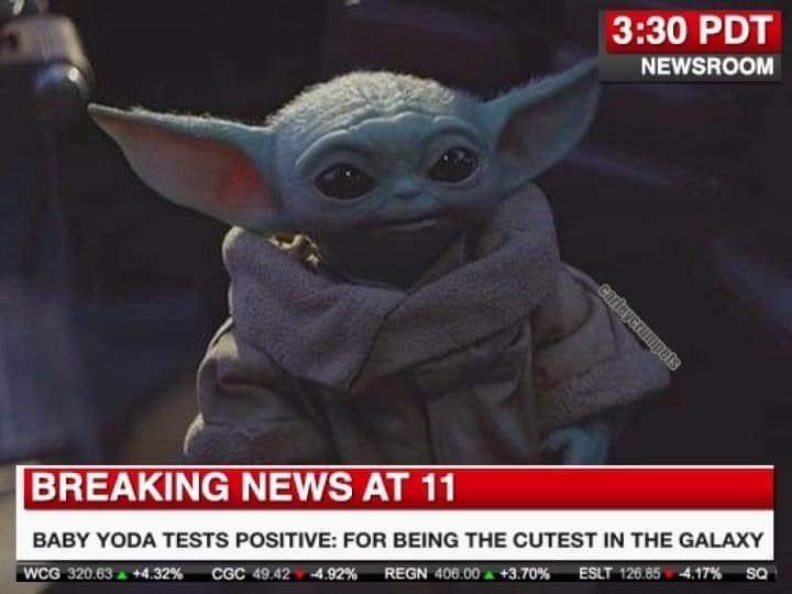 Pin By Jennifer Cash On Baby Yoda Yoda Meme Yoda Funny Yoda Wallpaper