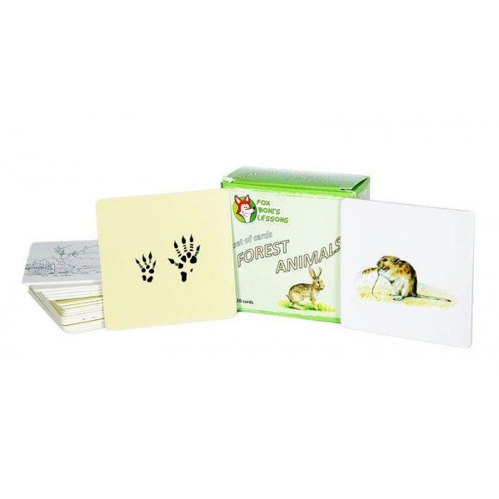 Karty Zwierzęta Leśne  - Lekcje Liska Boni // Forest Animals- Fox Boni's Lessons
