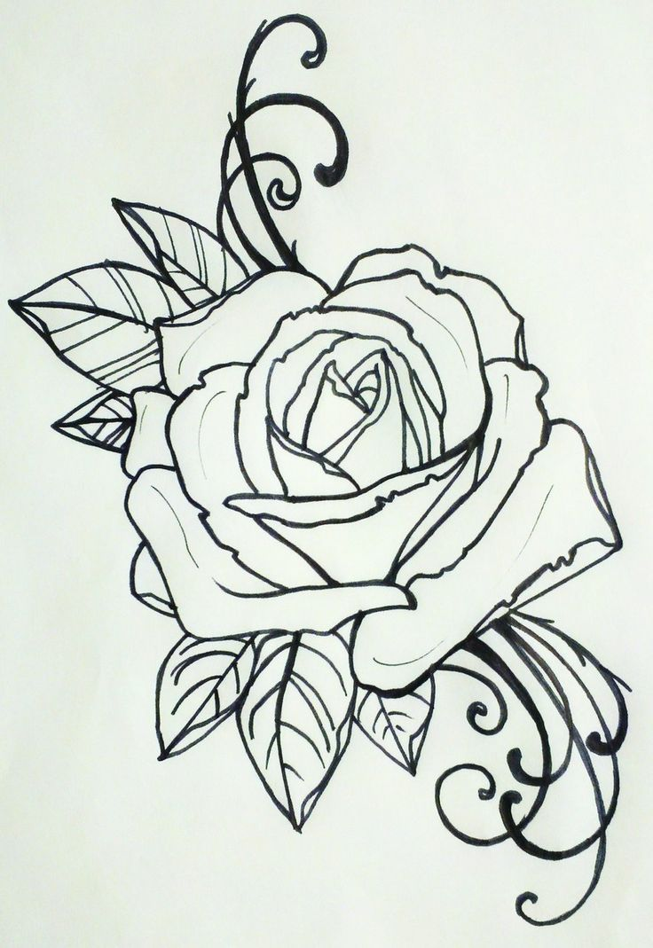 24 best traditional rose tattoo outline images on pinterest rose tattoo designs drawings ccuart Image collections