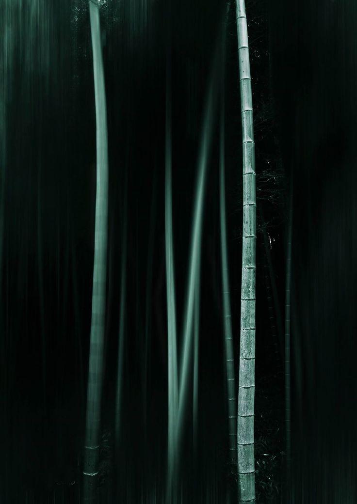 145 best bamboo images on Pinterest Bamboo, Bamboo architecture - fresh invitation letter japanese embassy