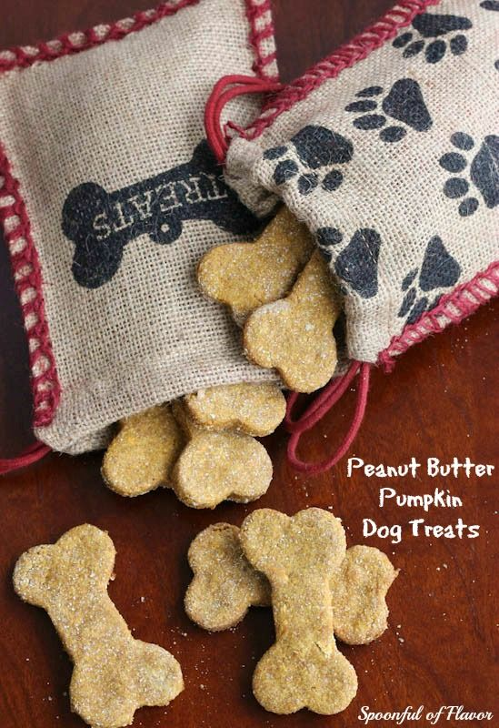 Peanut Butter Pumpkin Dog Treats - one bowl and a few ingredients create a wholesome treat for dogs!
