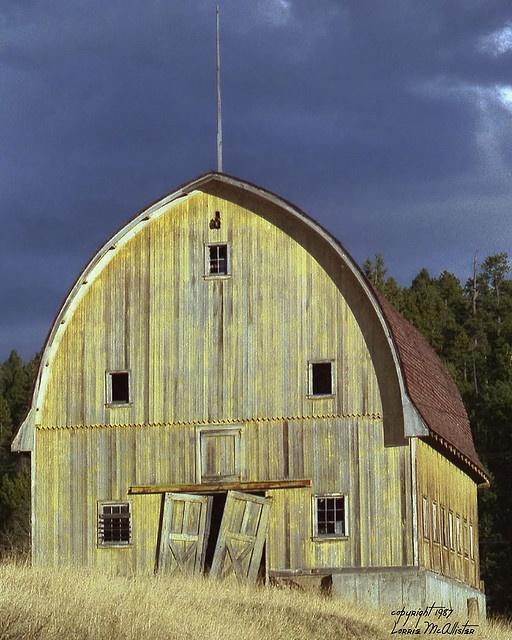yellow barn at bradford junction, conifer / aspen park area of colorado