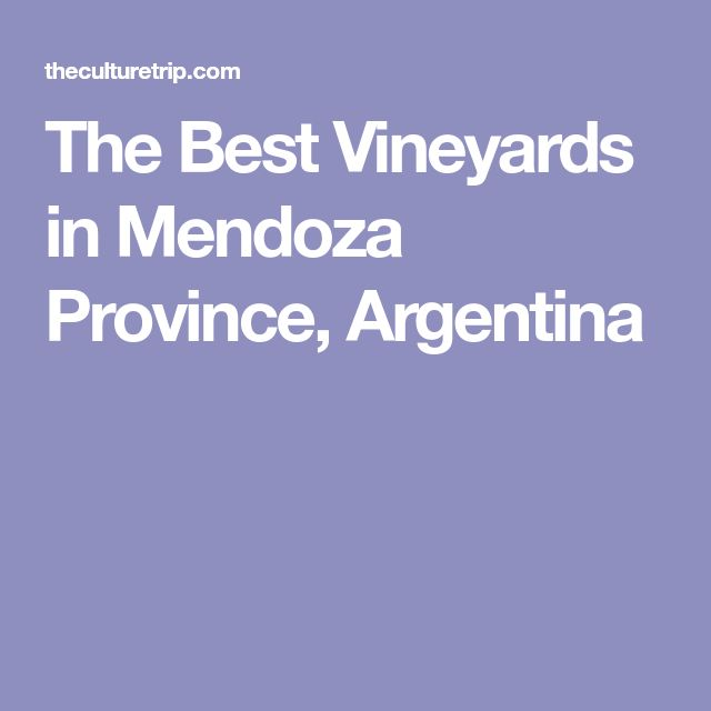 The Best Vineyards in Mendoza Province, Argentina