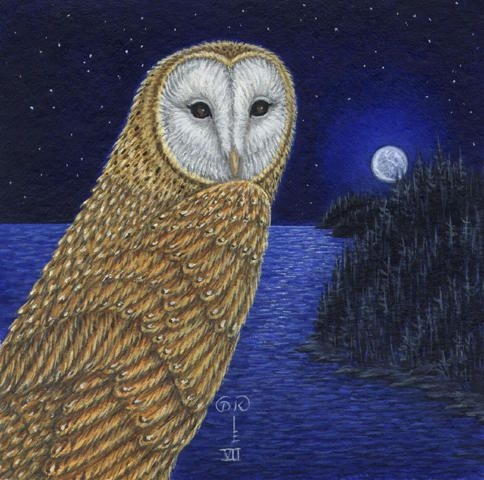 Diane kremmer birds owl golden hunter