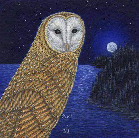 Diane kremmer birds owl golden hunter