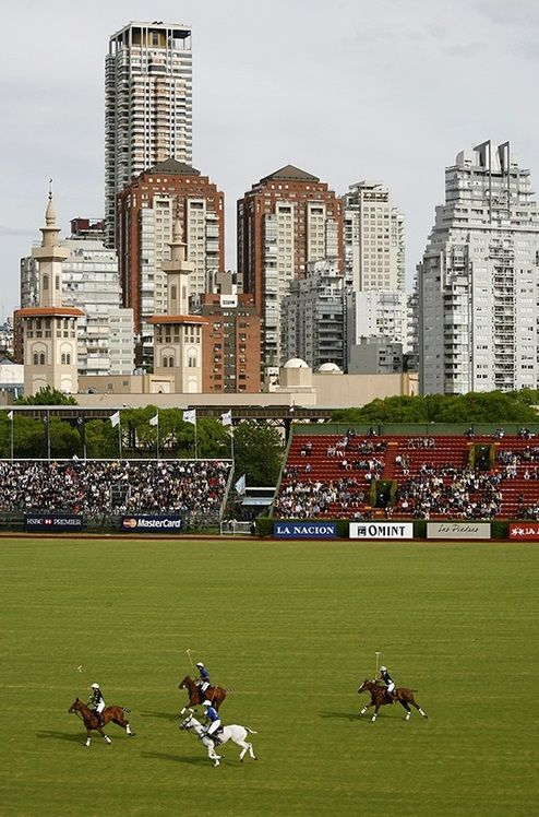 Go and see a polo match in the neighbourhood of Palermo (Buenos Aires, Argentina)