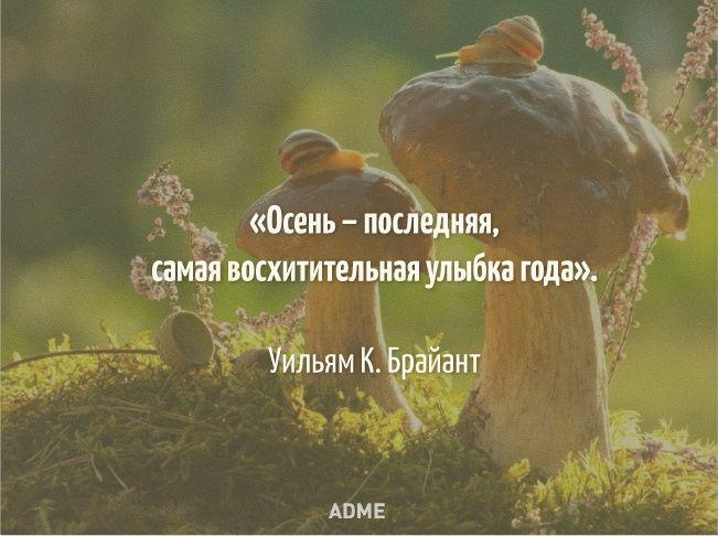 Смотрит осень вмои глаза...