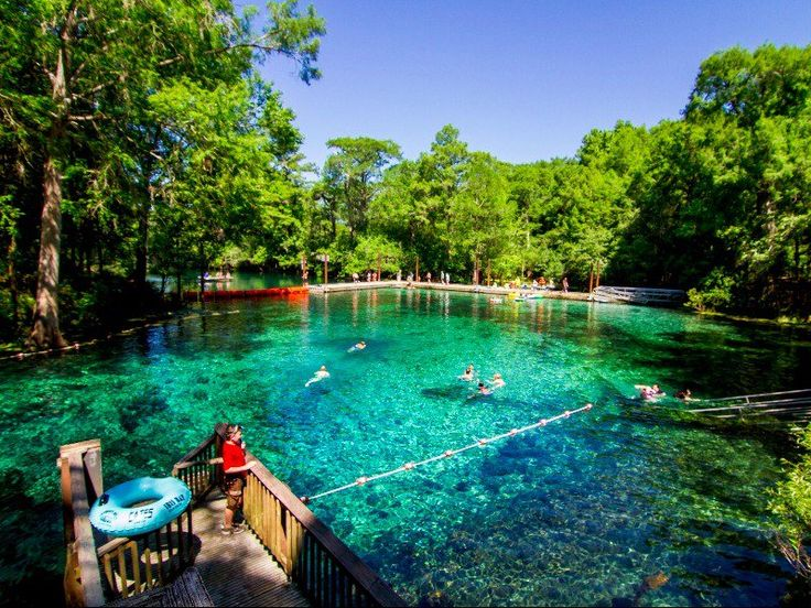 12 Springs in North Florida You'll Want to Jump Into ASAP